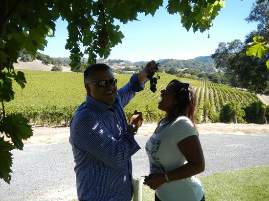 Healdsburg Wine Tours : My wife and I having some fun with grapes