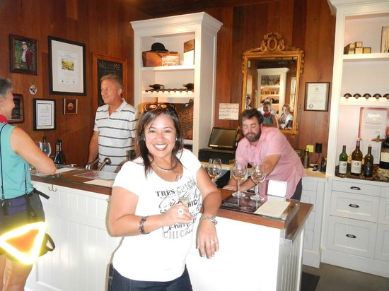 Healdsburg Wine Tours: another nice stop for tasting