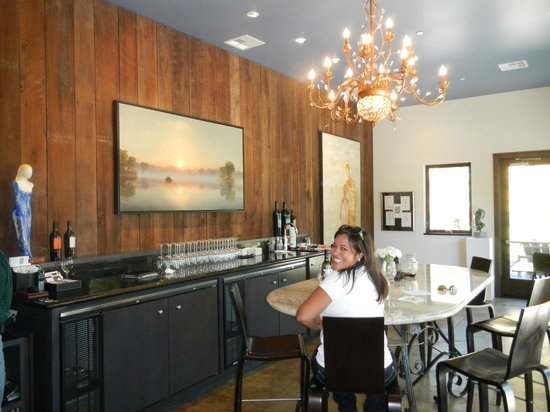 Healdsburg Wine Tours: gorgeous tasting room