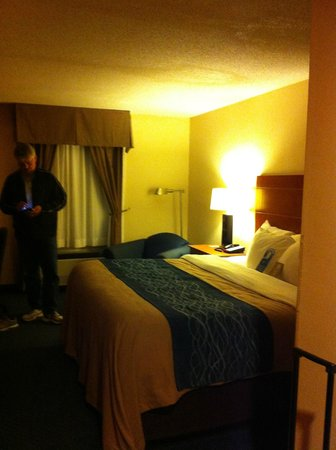 Comfort Inn Civic Center: king bed
