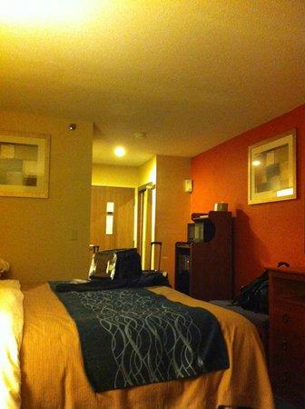 Comfort Inn Civic Center: king bed