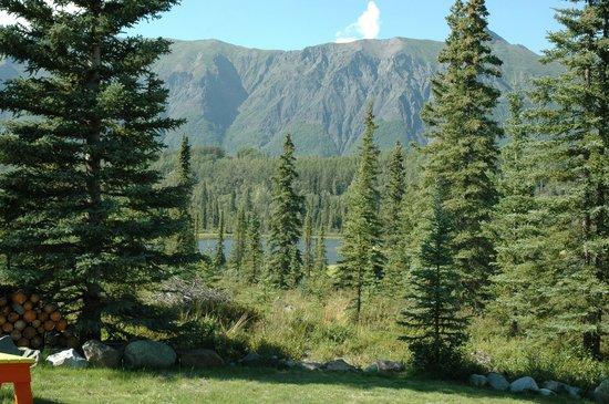Matanuska Lodge: View from the yard