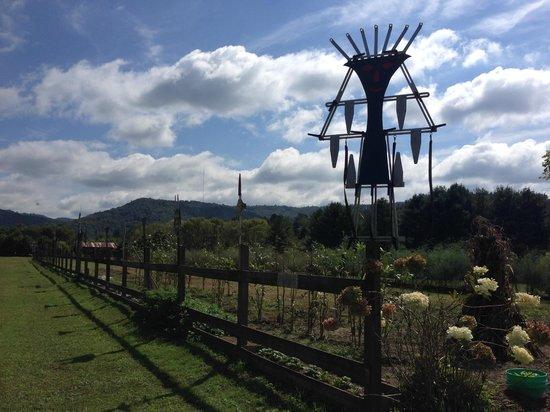 Deerwoode Lodge & Cabins : Garden