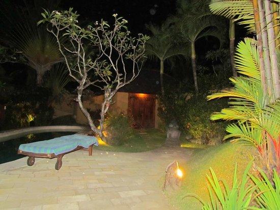 Dyana Villas: Entrance at night