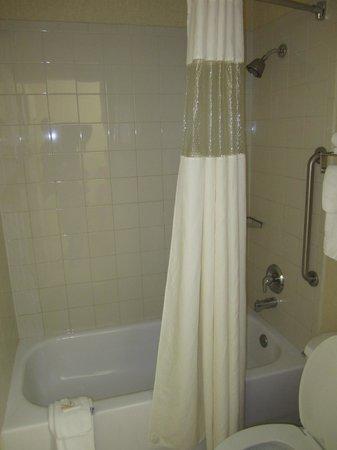 Econo Lodge Inn & Suites: Banheiro