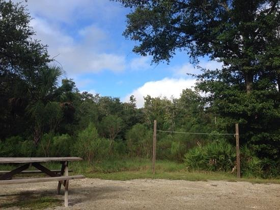 Rainbow Springs State Park: campsite has table, fire pit and grill