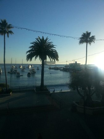 Snug Harbor Inn: Friday view from our window, cruise ship in the bay