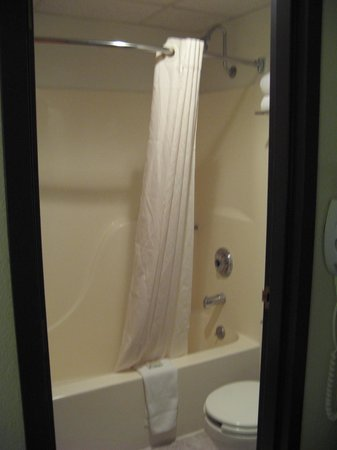 Townhouse Inn of Hamilton: Tub/shower