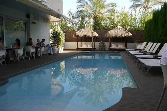El Hotel Pacha : プール