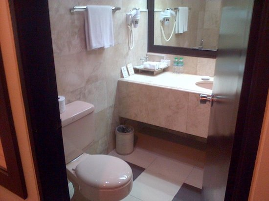 New Horizon Hotel: Toilet: clean and with ample space