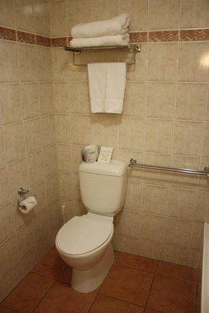 Ibis Styles Cairns : Bathroom