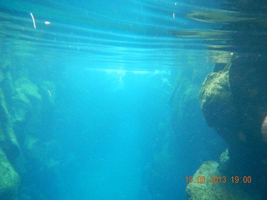 snorkeling @ las grietas