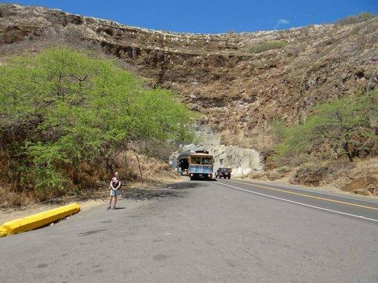 ไดมอนด์เฮด: Tunnel through side of crater for entry to park