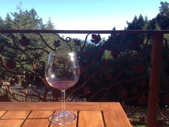 Fort Ross Vineyard Tasting Room: I'm not sure which is better?  This view or the Pino?