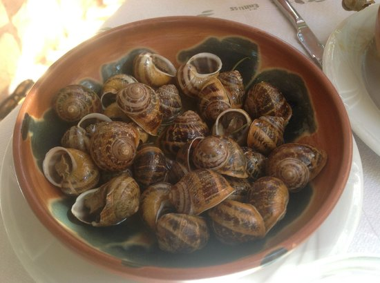 Kastro Apartments: Exotic snails