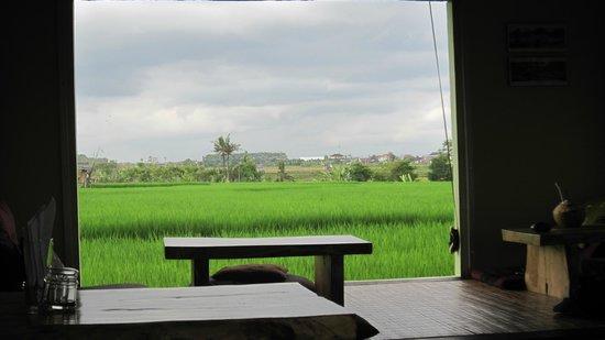 Xich Lo Warung Vietnam: Simply beautiful!