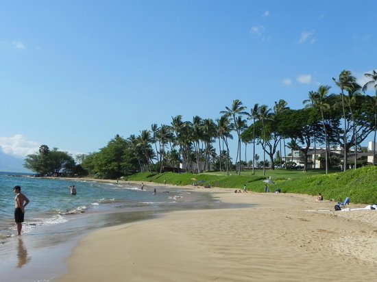 Wailea Beach: Nice white sands with perfect coconut trees