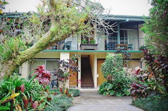 Dolphin Bay: 緑に囲まれたアパート