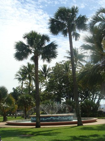 The Strand: Palm trees