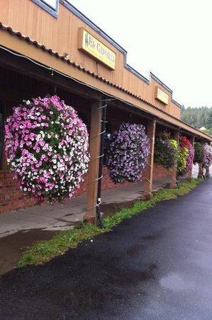 Cle Elum, WA: el cap flowers Baskets