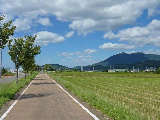 Tsukuba Rinrin Road