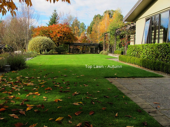 Twin Oaks Fiordland B&B: Autumn