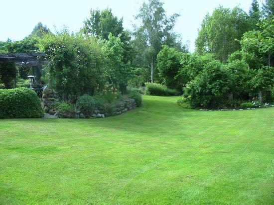 Twin Oaks Fiordland B&B: Garden in Early Summer