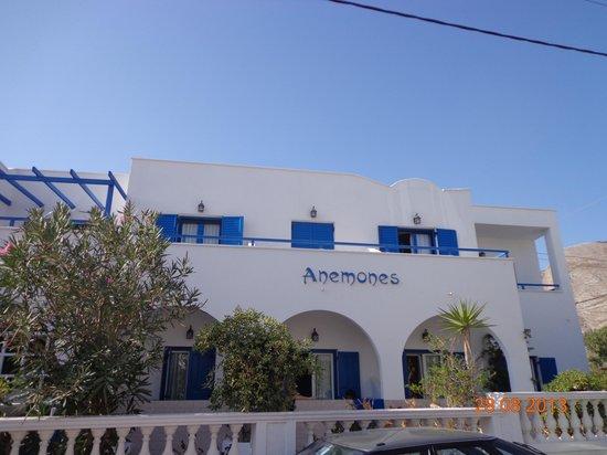 Hotel Anemones: street view