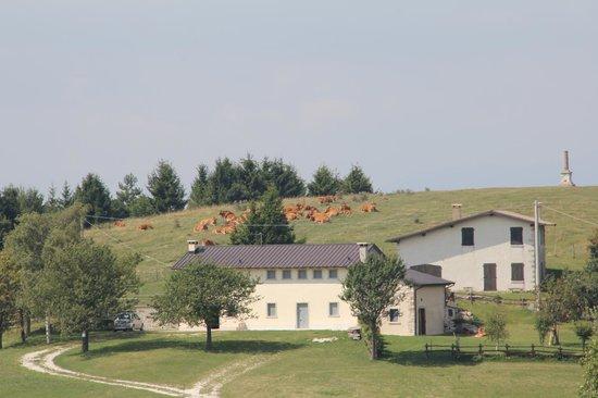 Rifugio Alpe Madre: Veduta frontale