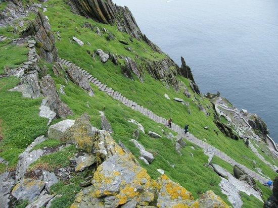 Skellig Island Tours Tripadvisor