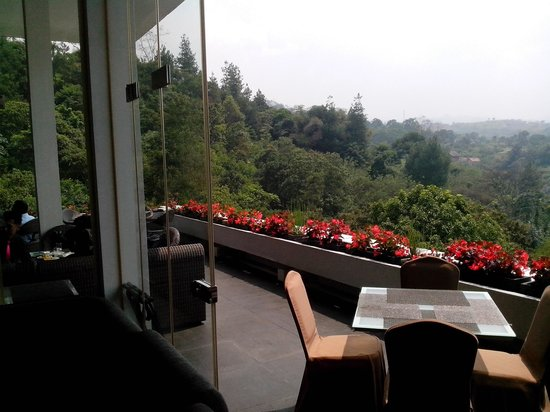 Another hotel view from dining room picture of padma hotel bandung padma hotel bandung another hotel view from dining room lobby decorations junglespirit Images