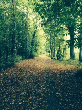 Royal Gunpowder Mills: autumn walk