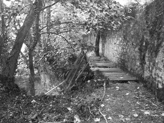 Royal Gunpowder Mills: old wodden bridge