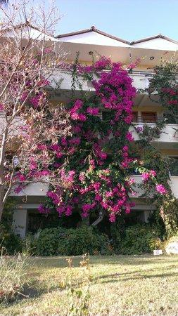 Hotel Pataros: Hotel
