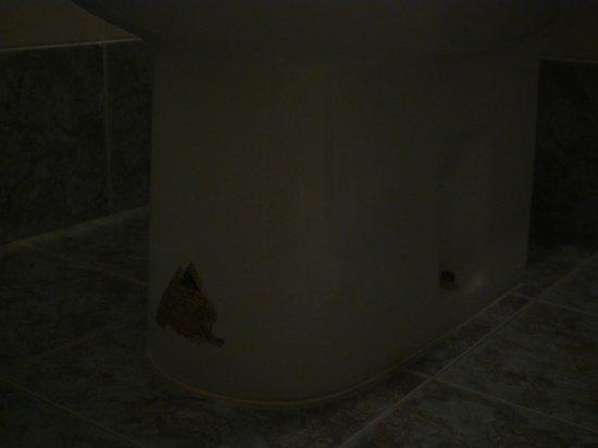 Hotel Belle Arti: Zerschlissenes Etikett am WC