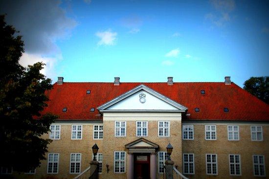 Skjoldenaesholm Hotel & Conference Center: Facade