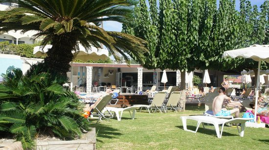 Venezia Resort : территормя