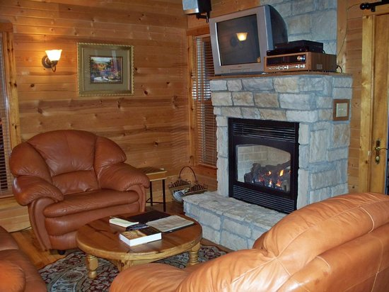 Harvest Moon Cottages: TV and fireplace