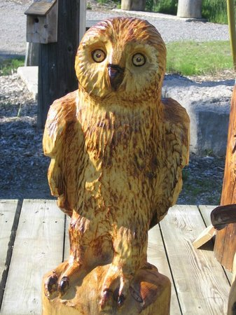 Pickering, Canada: Owls, Racoons and other small sculptures available for SALE