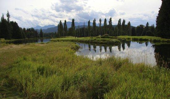 Kokanee Springs Golf Resort: The course at Kokanee