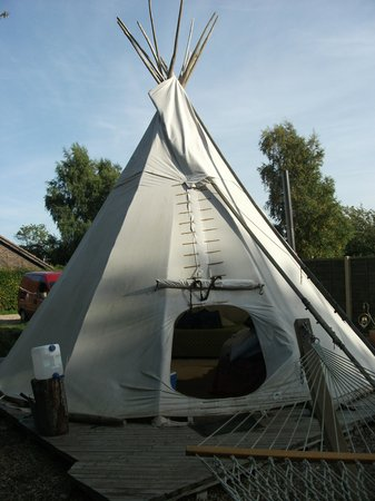 Norfolk Glamping & Yurt Holidays: outside tipi