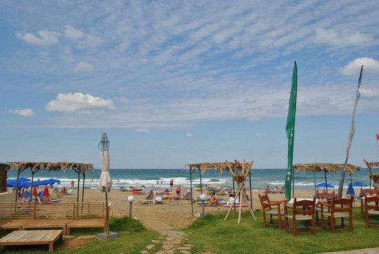 Sandy Beach Hotel: пляж