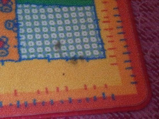 Hotel Rose: Des carpettes sur la moquette, et dans le même état