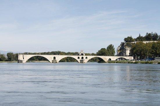 La Violette : Pont d'Avignon