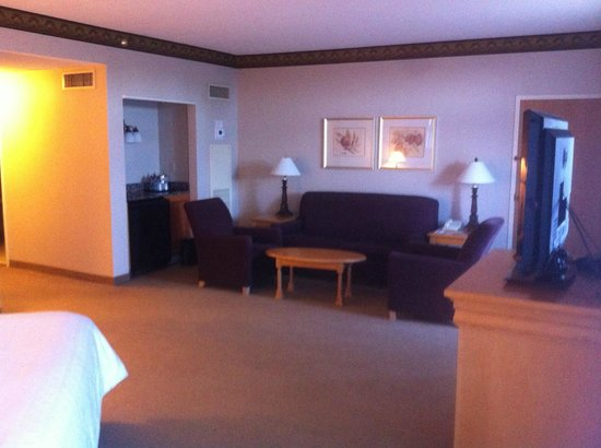 Sheraton Music City Hotel: Guest room sitting area
