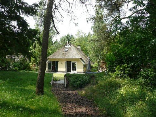 National Park Drents-Friese Wold: Bugalowpark 't Wildrijck, aan de rand van het nationaal park.