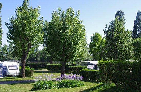 Kanopée Village de Trévoux : Terrain de Camping