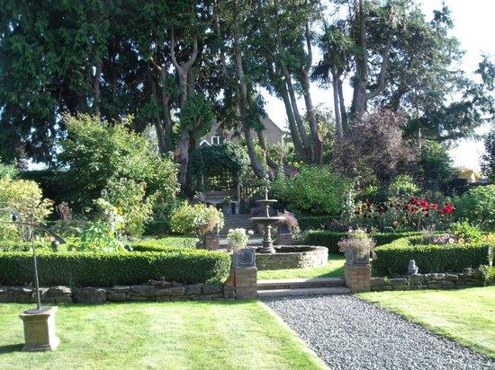 Part of the lovely garden