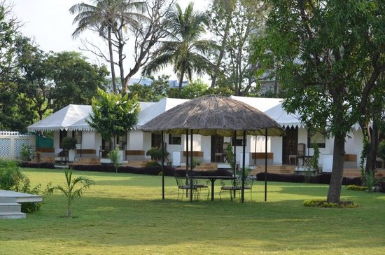 Shree Vilas Orchid: tents