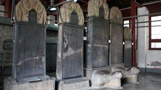 Musée de la Forêt de Stèles : Forest of Stone Steles Museum